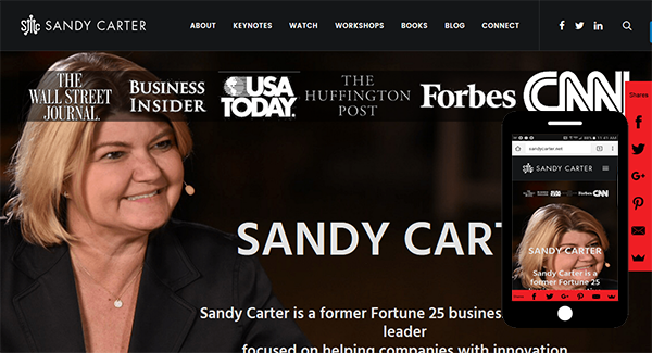 Web Design Example - Sandy Carter